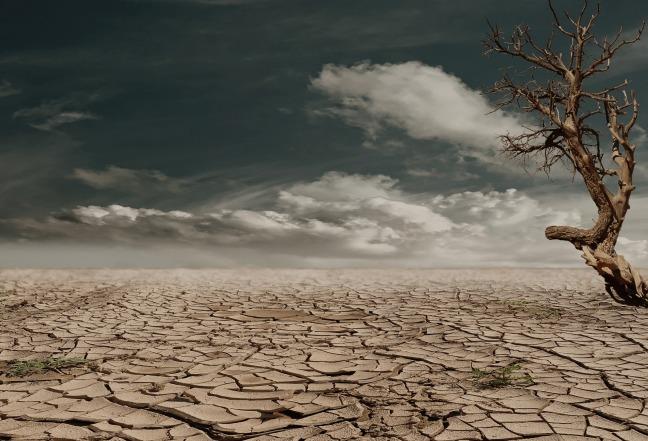 desert-279862.jpg