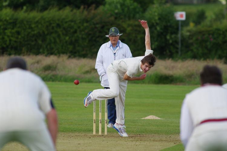 cricket-724618_1920.jpg