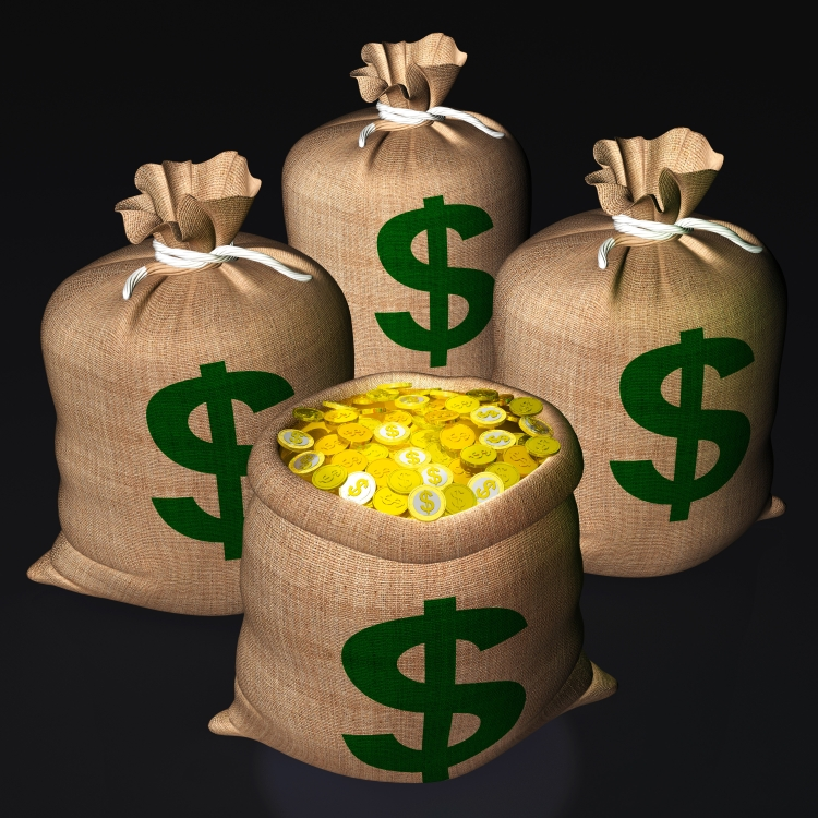 Bags Of Coins Showing American Treasure