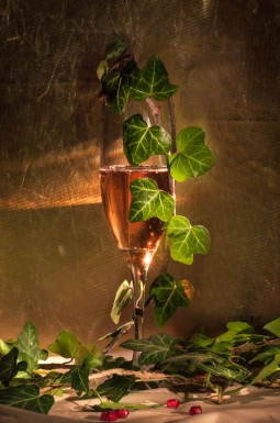 glass of pink champagne in vintage glass with leafs