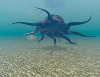 digitale visualisierung: unterwasser