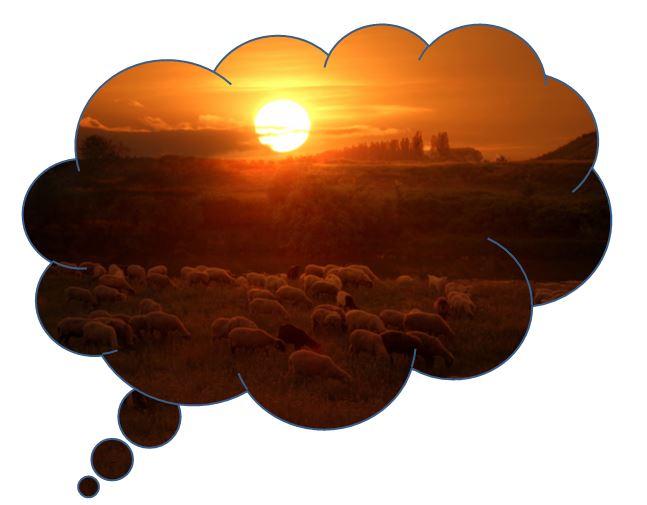 Dream Flock 4