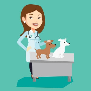 Veterinarian examining dogs vector illustration.
