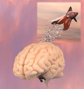 Brain Spring