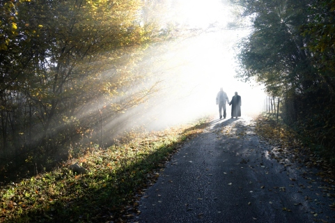 Crop Couple-in-beautiful-foggy-and-sunny-mysterious-nature_SFrOCUTSi