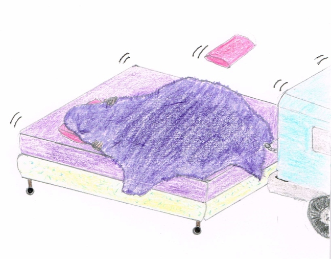 Runaway Bed