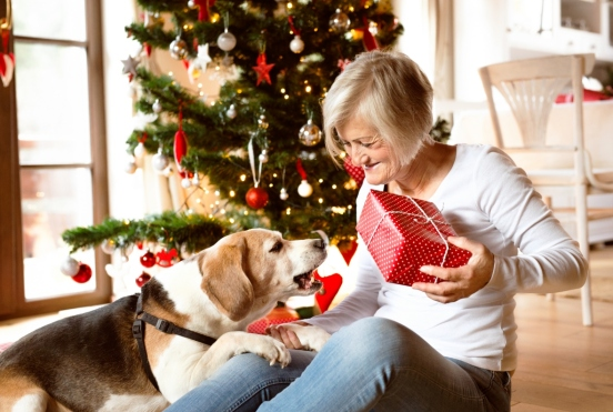 Graphicstock-beautiful-senior-woman-sitting-on-the-floor-with-her-dog-in-front-of-christmas-tree-opening-presents-inside-in-her-house crop