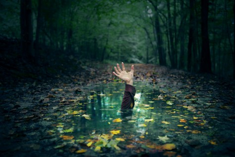 a-hand-reaching-out-of-a-puddle-in-the-forest_SiLfkWqUwx