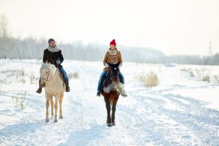 graphicstock-young-couple-enjoying-horse-riding-together_ByhKQ19RmZ