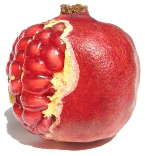 pomegranate_Gkj98w__